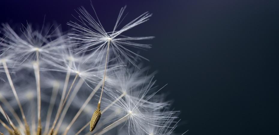 Ota vastaan jokainen mahdollisuus ja paasta irti jokaisesta pelosta ja muita uuden elamantilanteen oppeja