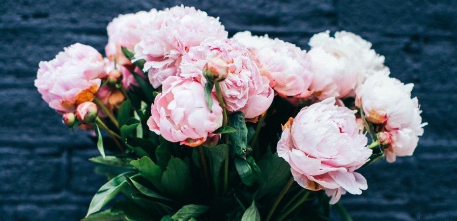 Koska sina olet rakkauden arvoinen 7 harjoitusta itsesi rakastamiseen
