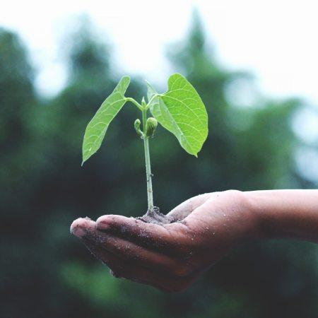 Maaliskuun energia kasvun aika